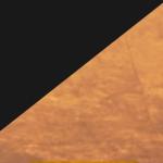 Matte Black Metal/Gold Leaf Reflector (MBGL)