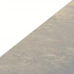 Matte White Metal/Silver Leaf Reflector (WTSL)